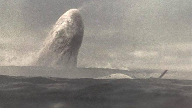 Afundamos com ele, ao mesmo tempo aterrorizados e em estado de graça; afundamos com Ahab e seu leviatã branco, no meio do nada.