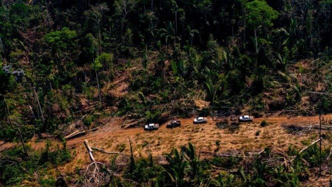 Fundos de investidores estão consternados com a situação amazônica. Pressão vai funcionar?