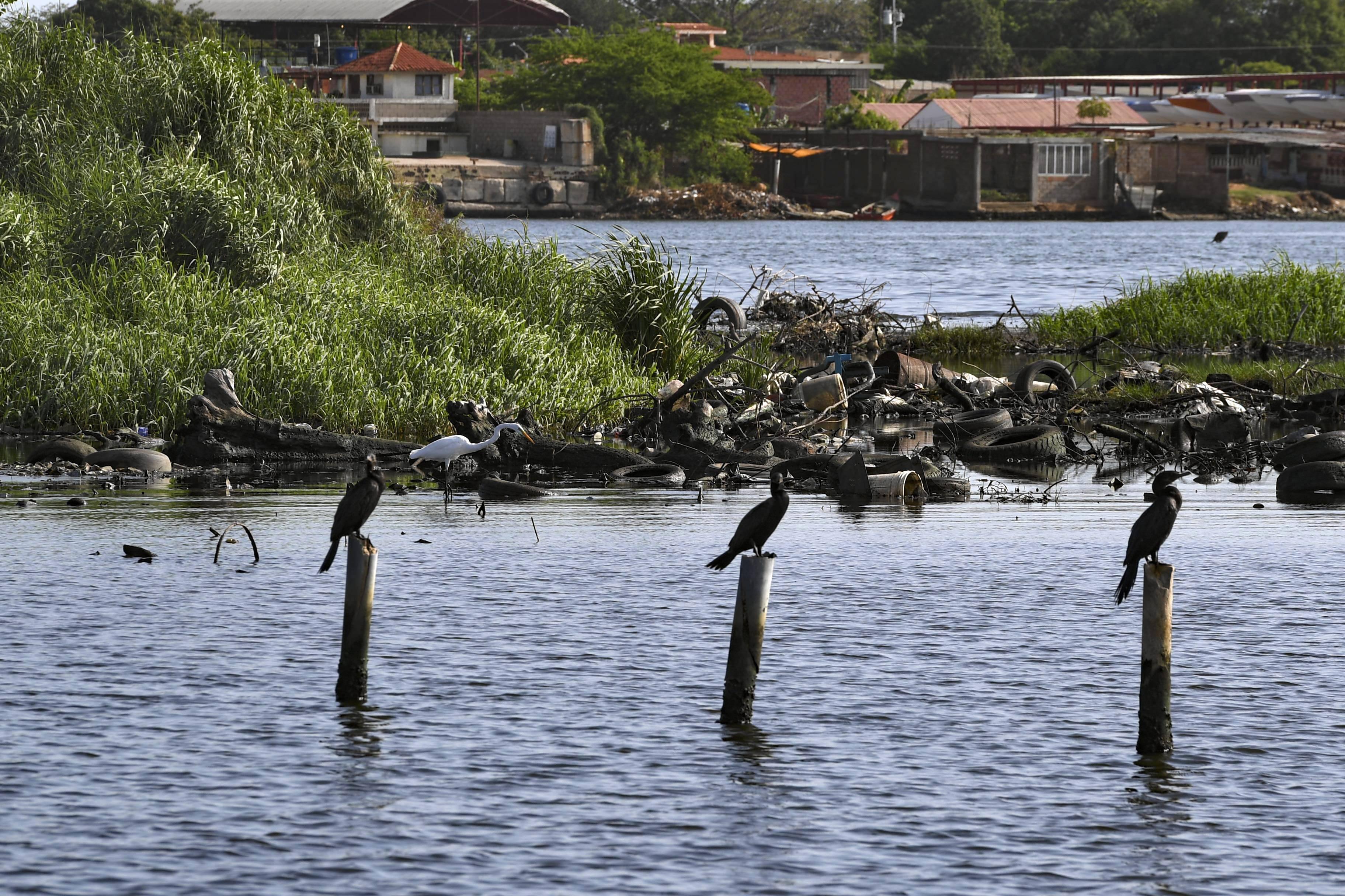 Vista do poluído lago Maracaibo | Foto: YURI CORTEZ / AFP