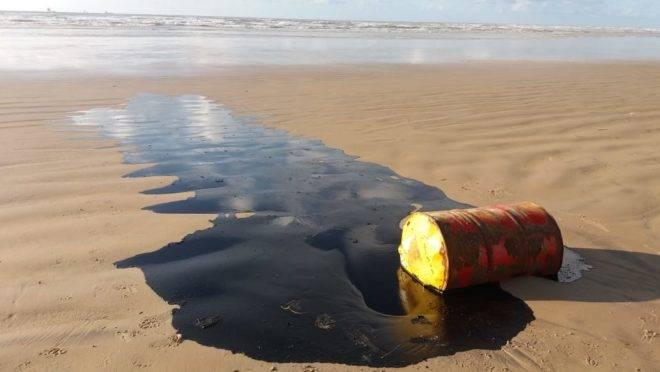 Resultado de imagem para óleo prais nordeste