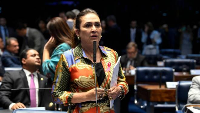 A senadora Kátia Abreu (PDT-TO).