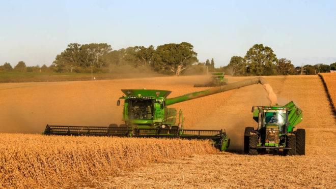 Mato Grosso, Paraná e Rio Grande do Sul devem liderar produção de soja
