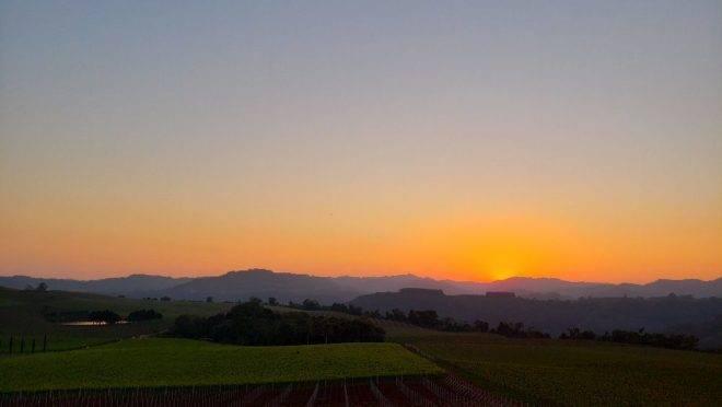 Quando se trata de aproveitar bons vinhos e paisagens inesquecíveis, a Serra Gaúcha é destino de viagem obrigatório. F