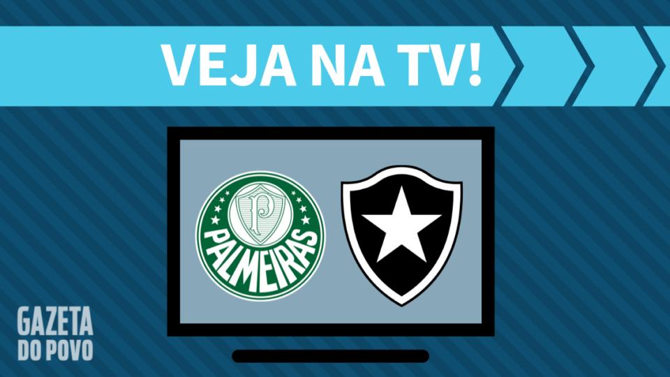 Palmeiras x Botafogo AO VIVO: saiba como assistir ao jogo na TV