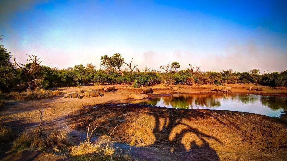 Reserva natural em Eswatini. Foto: Bigstock<br />
