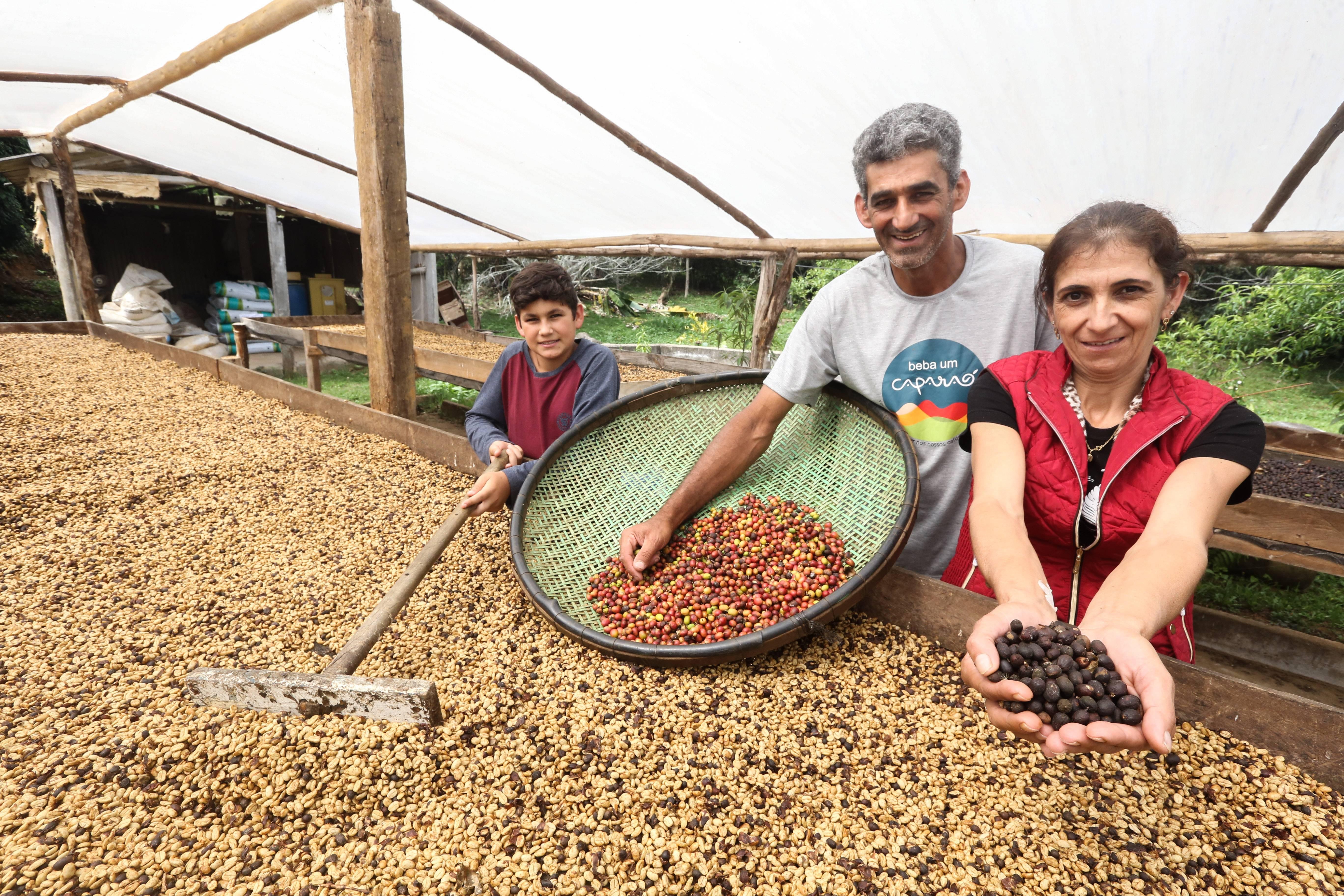 Afonso Lacerda, sua esposa Altilina e o filho Augusto: orgulho de produzir o café considerado o melhor do Brasil. Foto: Rogério Machado/Gazeta do Povo