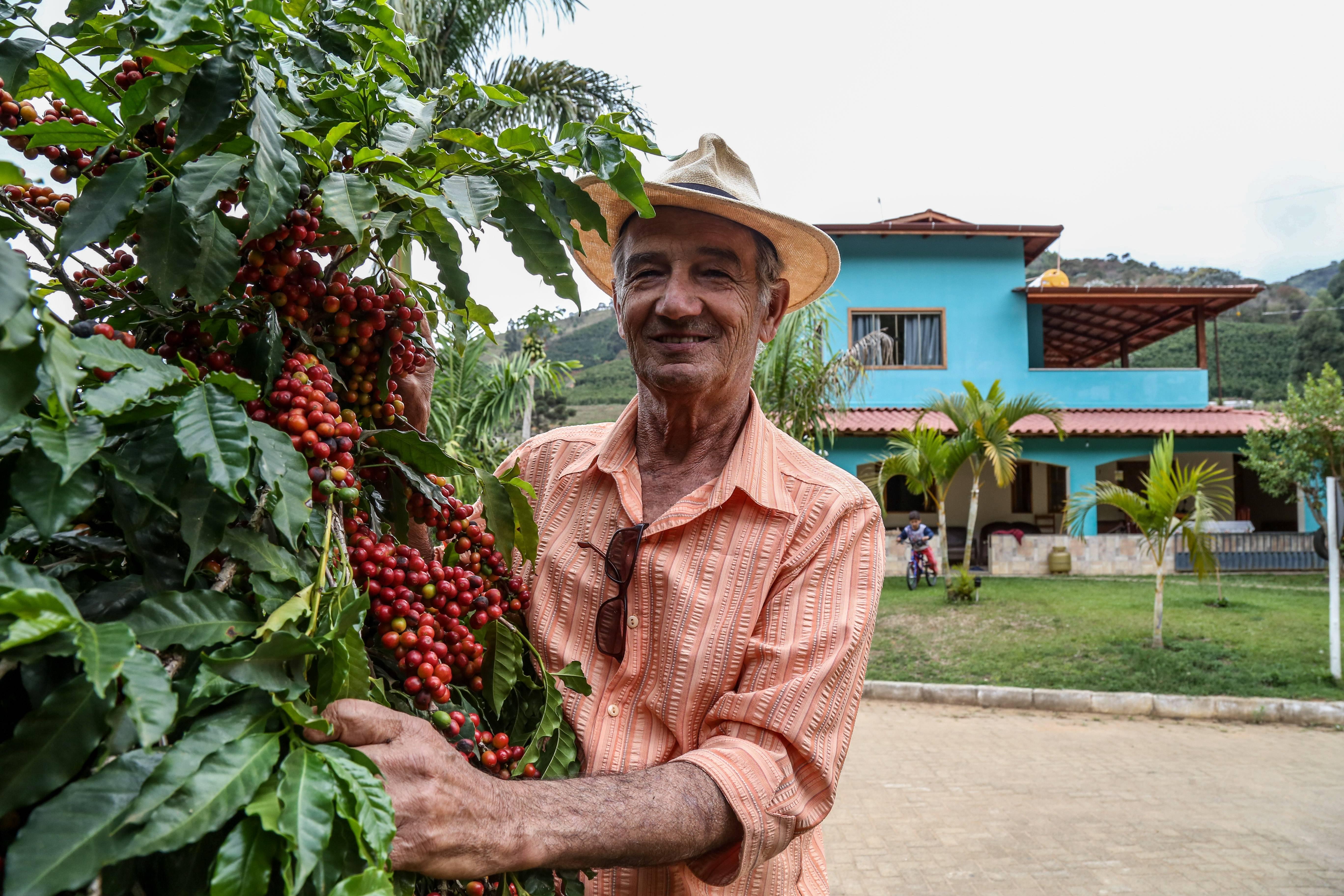 O cafeicultor Manoel Protázio de Abreu, que planta variedades de café arábica. As plantas são polinizadas por abelhas e ele não usa agrotóxicos na lavoura. Foto: Rogério Machado/Gazeta do Povo