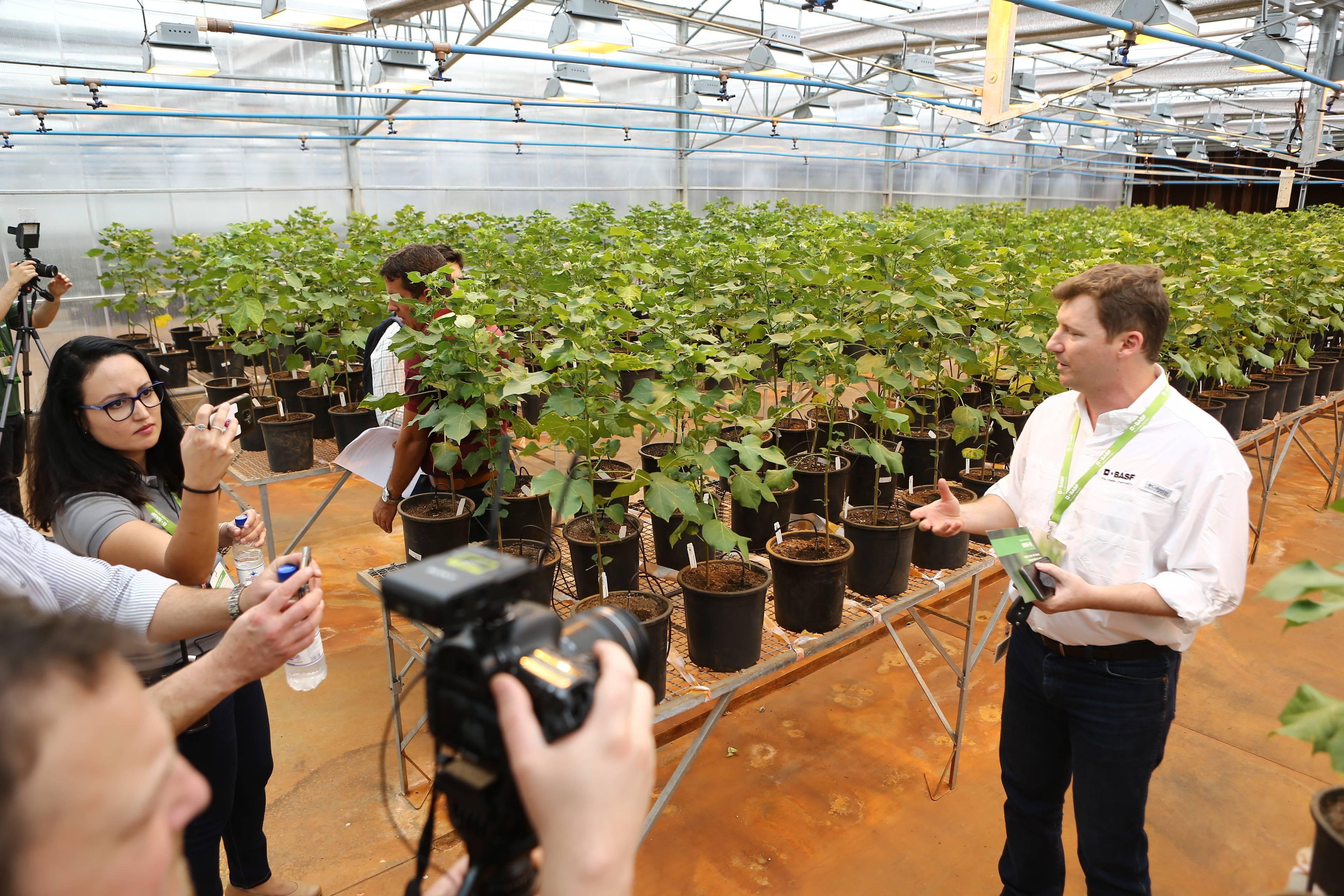 Centro de Pesquisas da BASF, em Trindade (GO)   Foto: Divulgação