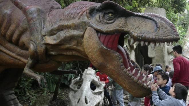 Visita a dinossauros é gratuita em Quatro Barras, mas doações para instituições beneficente são bem-vidas.