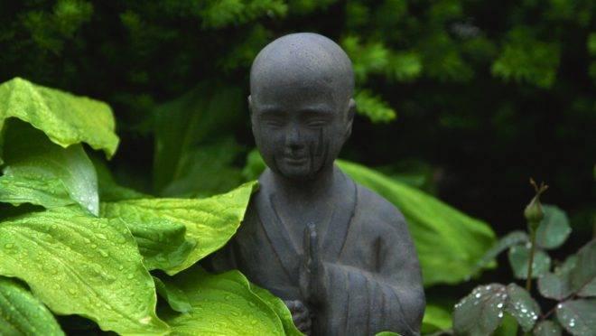 O desprezo pela sabedoria