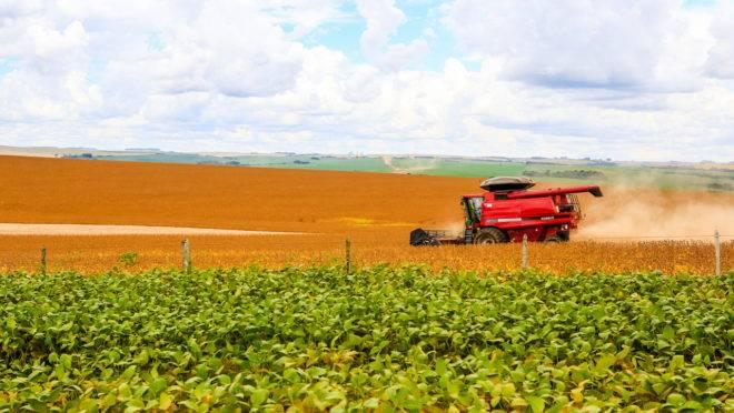 A agropecuária foi o setor com o maior crescimento no terceiro trimestre, segundo o IBGE.