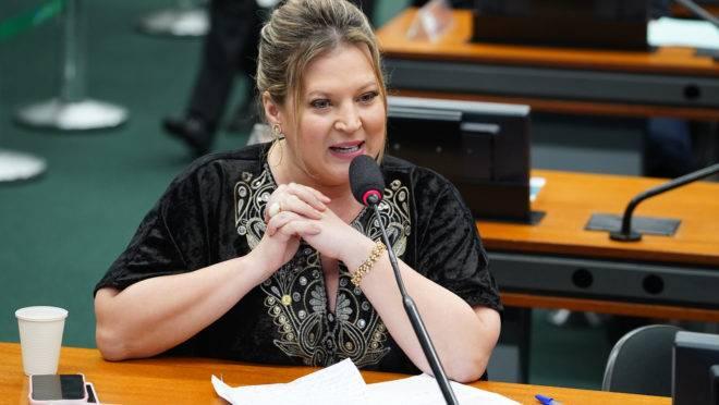 CPI das Fake News: Joice Hasselmann