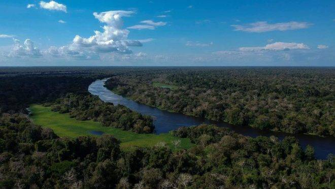 Reserva de floresta Amazônica no Brasil.