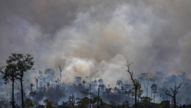 Queimada na Floresta Amazônica perto de Altamira, no Pará: regras claras e incentivos podem ajudar financeiramente os produtores que não desmatarem as terras