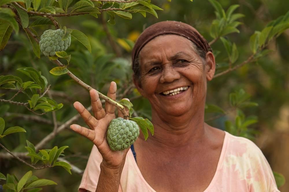 """Situada numa região onde o forte da agricultura é a plantação de fumo (80%), Irene se orgulha não usar agroquímicos nas culturas que produz. """"Aqui não tem veneno"""", reitera. Foto: Rogério Machado/Gazeta do Povo"""