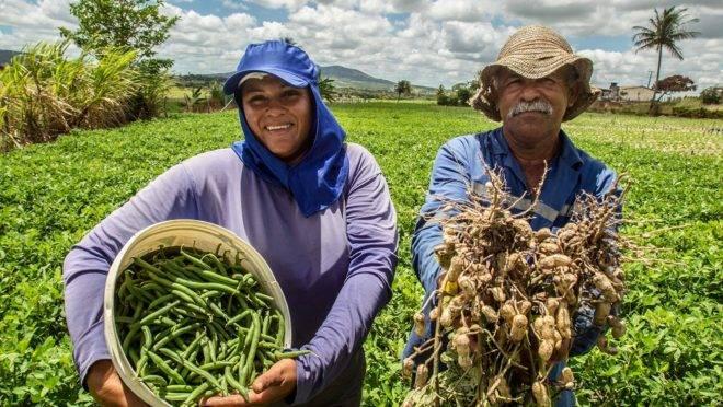 Jucimara Vieira da Costa e Genilson Bispo dos Santos, produtores de Itabaiana (SE): irrigação trouxe a possibilidade de plantar hortaliças o ano inteiro