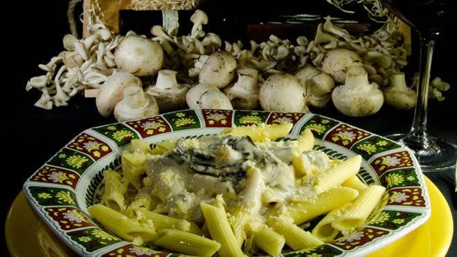 Penne ao Funghi da Ricciardi Massas, uma delíciaPenne ao Funghi da Ricciardi Massas, uma delíciaPenne ao Funghi da Ricciardi Massas, uma delícia