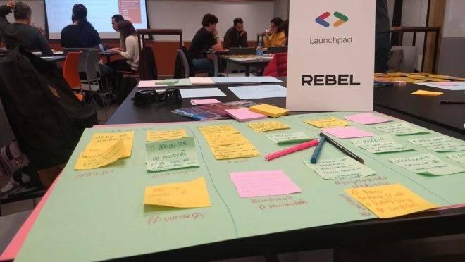 Rebel vai participar de programa de aceleração da Endeavor. Foto: Divulgação