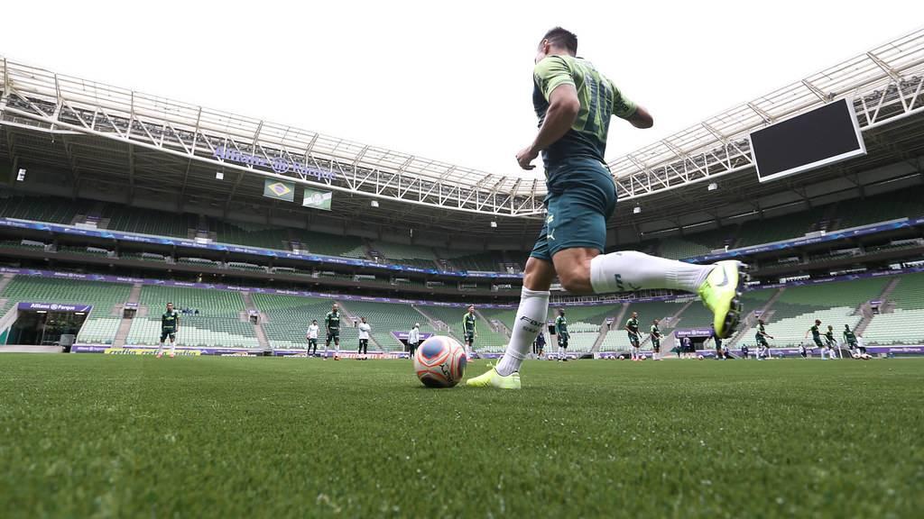 Palmeiras vai estrear nova grama no domingo (16) | Foto: Cesar Greco/Palmeiras