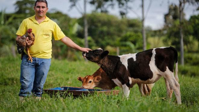 Desde a entrada como cooperado da Coopeler, Leandro tem conseguido 50% de crescimento nas receitas do preço do leite comercializado. | Foto: Jonathan Campos/ Gazeta do Povo
