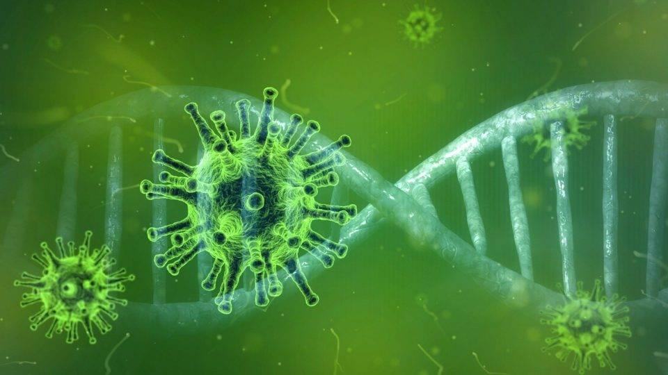 EUA têm 91 casos confirmados de coronavírus