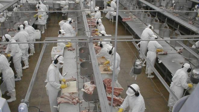 Produção de alimentos do Paraná não sentiu os efeitos da pandemia da Covid-19.