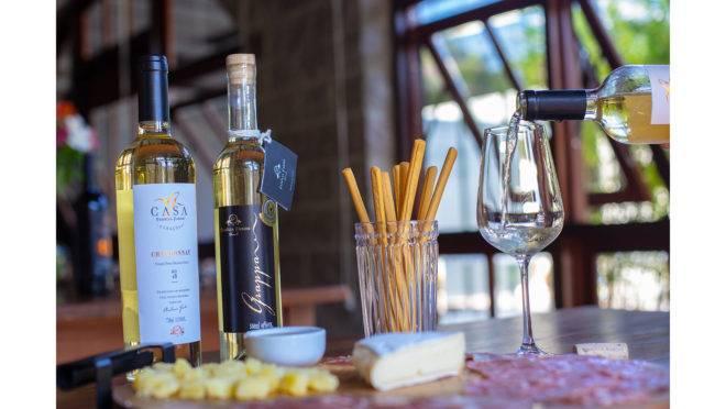 Veja ótimas sugestões de vinhos para apreciar em dias quentes
