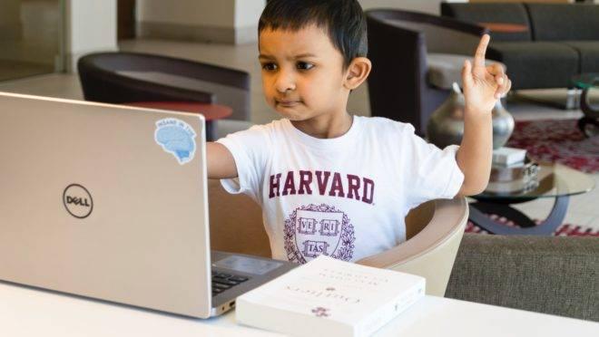 35% das startups de educação do país oferecem conteúdo online.