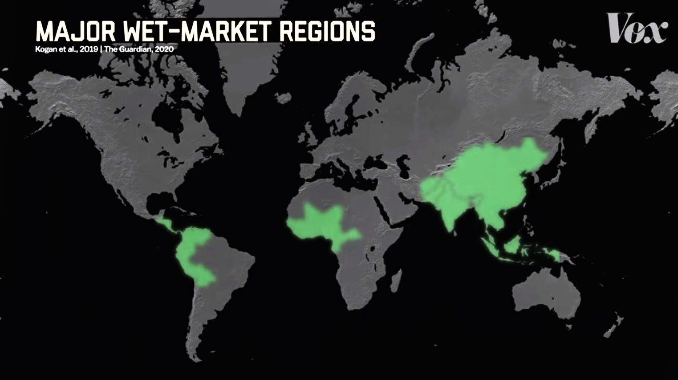 Com informações dos jornais The Guardian e JMIR, especializado em saúde pública, o canal Vox Atlas criou este mapa onde estão concentrados os principais mercados úmidos no planeta.