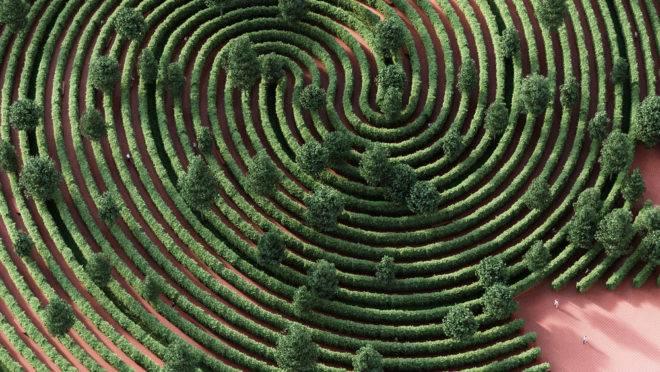 Inspirado em uma impressão digital, a ideia do parque é que as trilhas sejam percorridas individualmente.