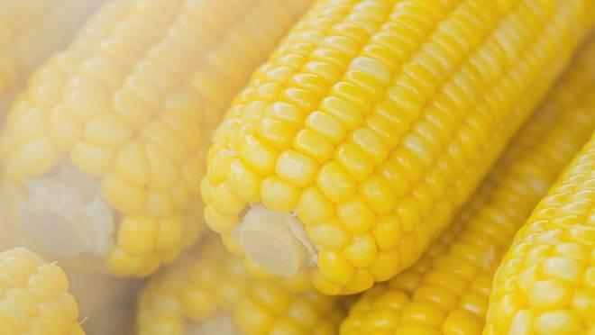 Carboidratos não são só pães, massas e bolos, mas também a lentilha, feijão e grão-de-bico