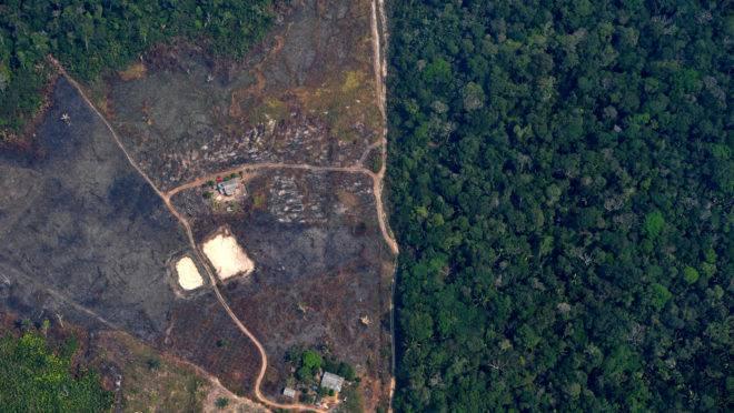 Imagem de área desmatada em Rondônia, em agosto de 2019.