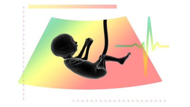 Defensoria Pública tem atuações questionáveis em questões como aborto, família e drogas