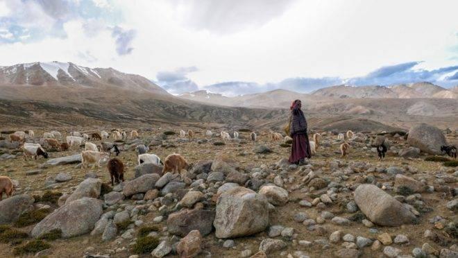Pastora nômade Changpa na vila de Korzok, distrito de Ladakh, em foto de agosto de 2019. Autoridades da Índia disseram que centenas de tropas chinesas foram mobilizadas para a zona em disputa na fronteira entre os países