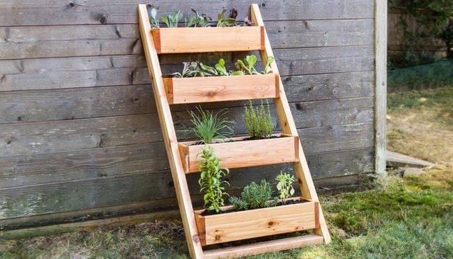 Aprenda a fazer uma estrutura de madeira para abrigar sua horta de hortaliças e temperinhos