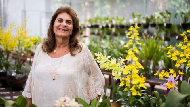 """Batizada carinhosamente de """"rainhas das orquídeas"""", Rosita Beltrão Almeida Rischbieter abriu recentemente a Orquidaria Rosita para dividir com as pessoas sua coleção de orquídeas de mais de 18 anos."""