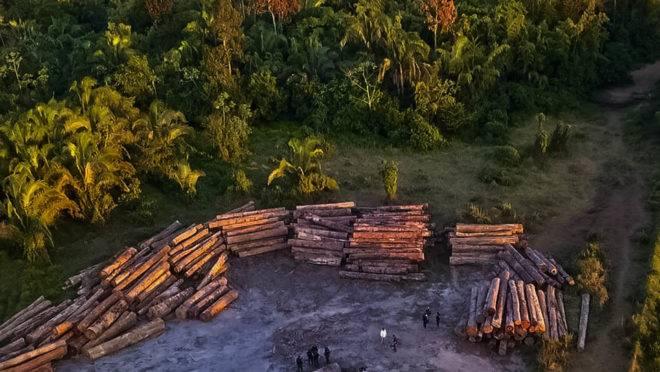 Desmatamento ilegal no Pará, flagrado em operação do governo estadual em 2019: política ambiental da gestão Bolsonaro e declarações de autoridades afetam reputação do país no exterior.