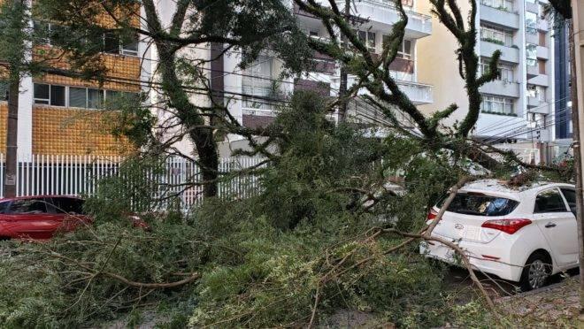 """Tempestade e """"ciclone bomba"""" causam estragos em Curitiba – Gazeta do Povo"""
