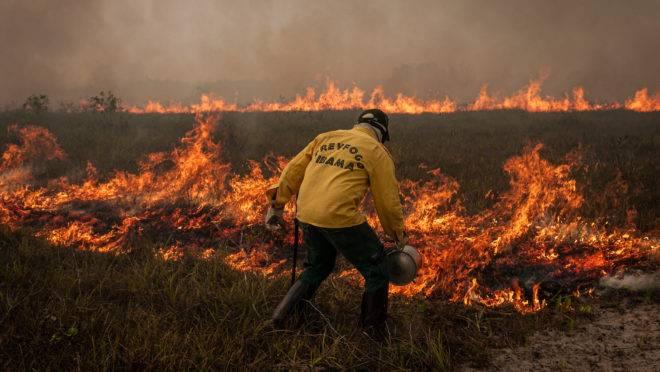 PT quer obrigar governo a combater incêndios
