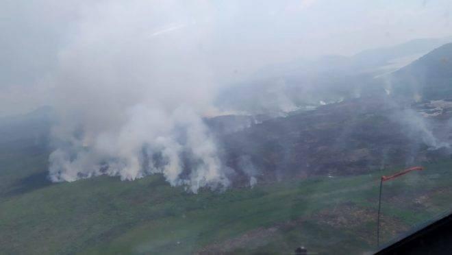 queimadas mato grosso do sul pantanal