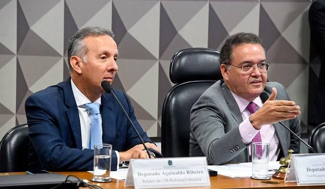 O presidente da comissão, senador Roberto Rocha, e o relator, deputado Aguinaldo Ribeiro, em reunião do grupo no início do ano.