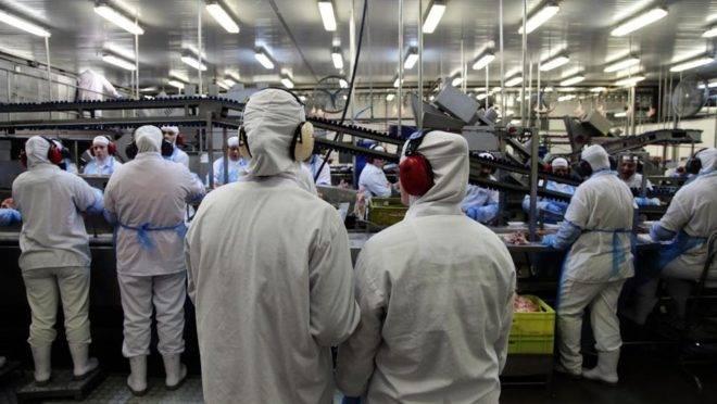 Paraná responde por 40% das exportações do frango brasileiro