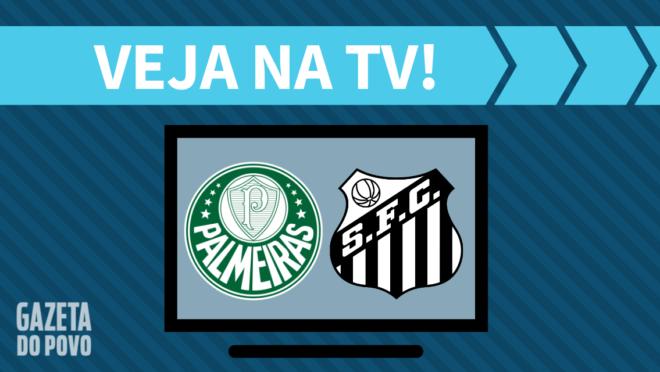 Palmeiras x Santos AO VIVO: saiba como assistir ao jogo na TV