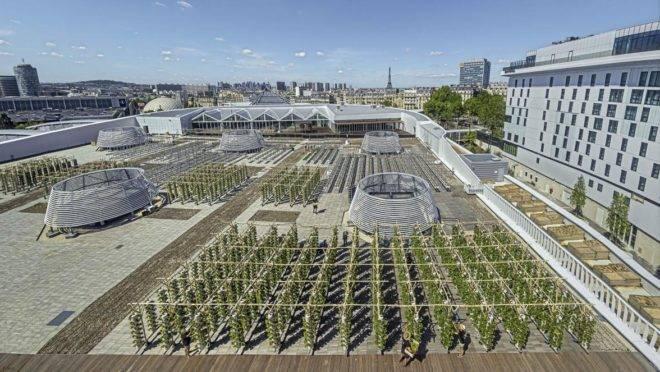 Fazenda urbana em Paris tem  14 mil metros quadrados e produzira cerca de mil frutas e vegetais todos os dias.