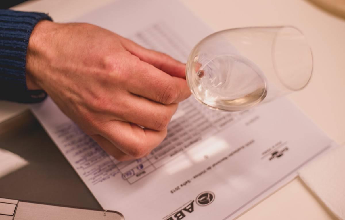 Avaliação Nacional de Vinhos de 2020 tem recorde de amostras. Foto: Jeferson Soldi/ABE