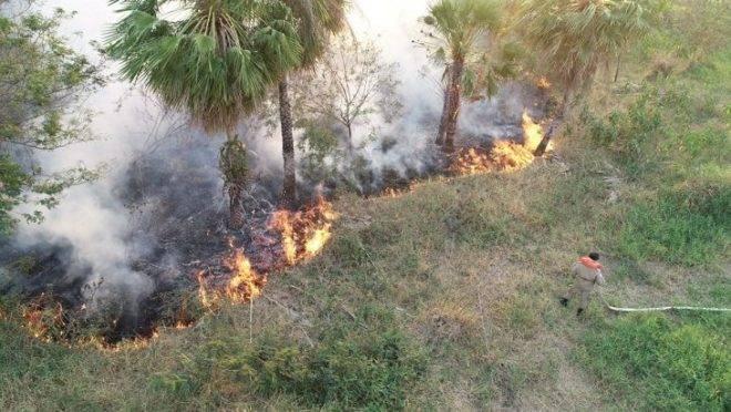 """ICMBio esclarece """"fogo contra fogo"""""""