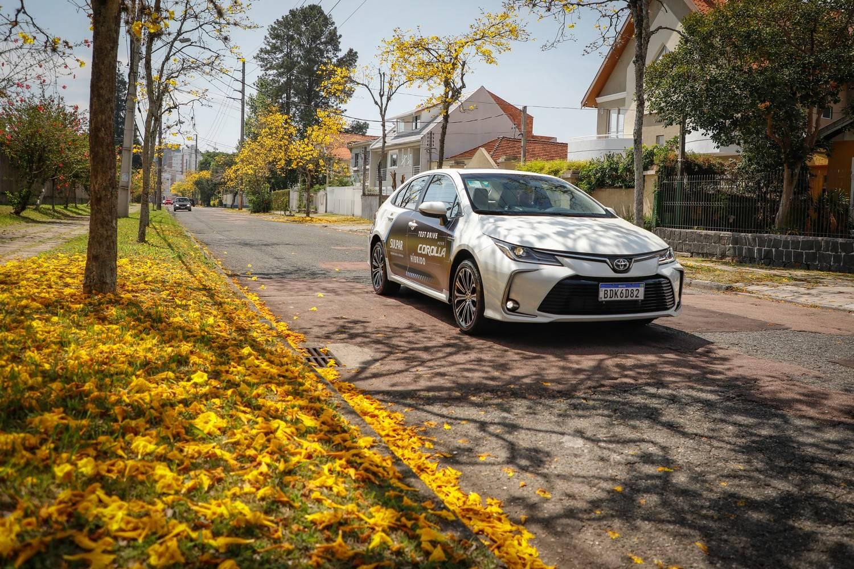 Toyota Corolla híbrido test drive Sulpar