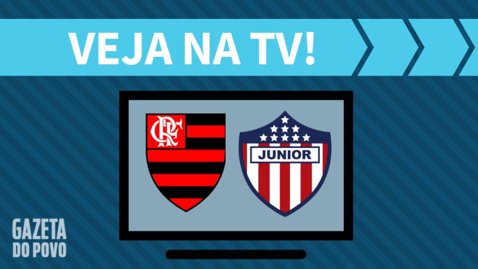Flamengo x Junior AO VIVO: saiba como assistir ao jogo na TV