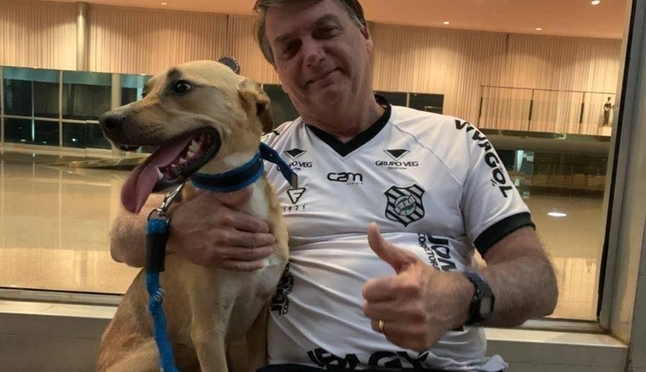 """Bolsonaro posta foto ao lado de cão e diz: """"vacina obrigatória só no Faísca"""""""