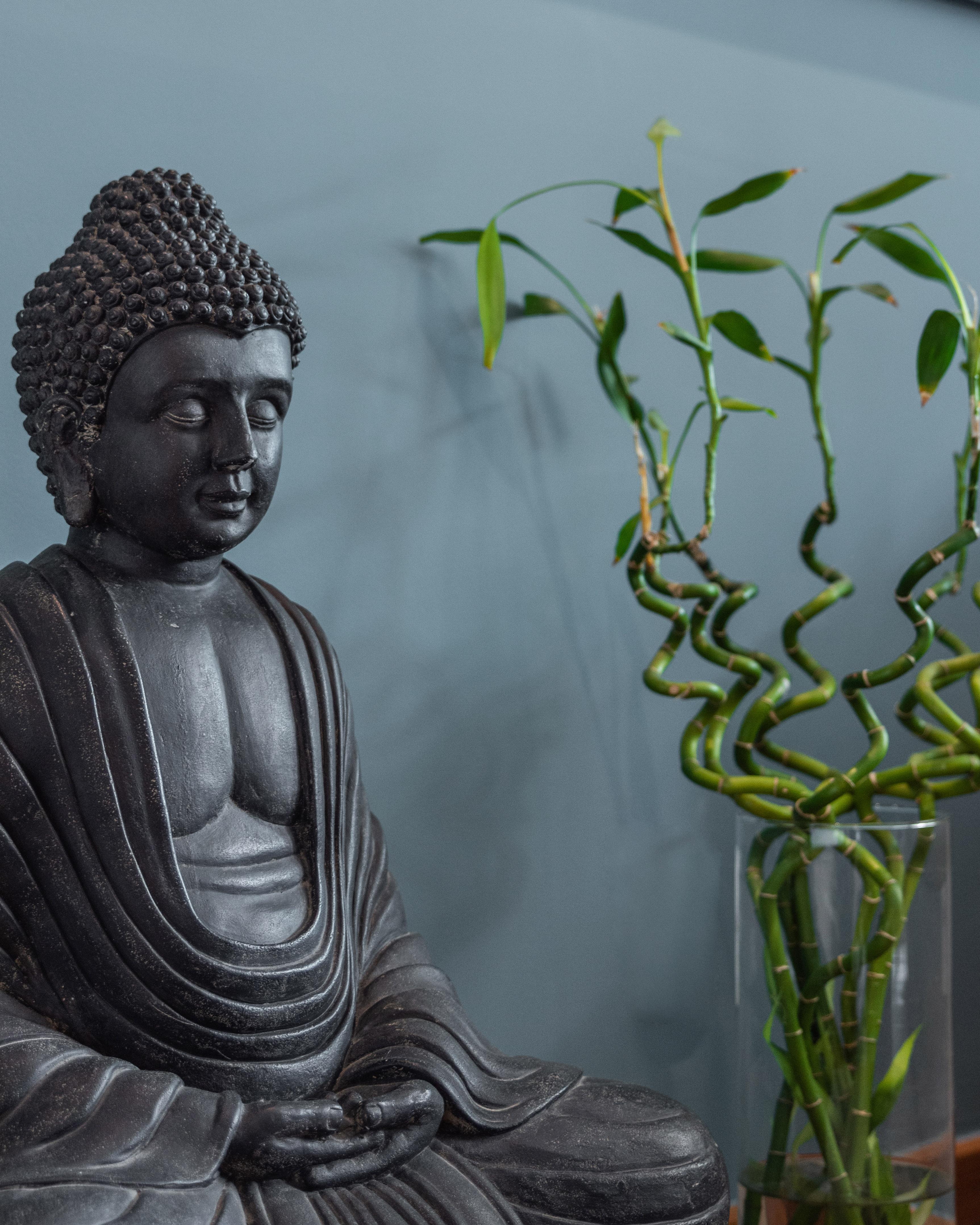 Cantinho de meditação com plantas e uma escultura de Buda.